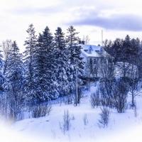 Scene in Norway