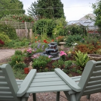 My Garden & Home