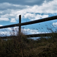 Fence against the sky