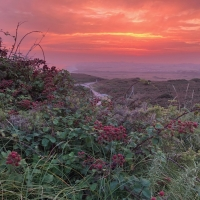 Sunset at Hengisbury Head